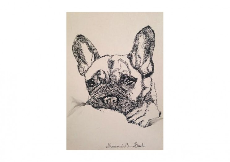 dog_chien_dessin_mademoiselle_melle_bouche_art_creation