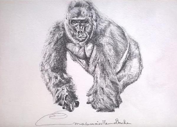 gorille_animaux_art_dessin_zoo_melle_mademoiselle_bouche