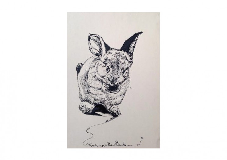 lapin_dessin_art_creation_mademoiselle_melle_bouche